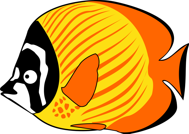 800x566 Tropical fish clipart 2