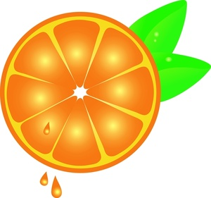 300x281 Free Orange Clipart Image 0515 1006 2302 4254 Food Clipart
