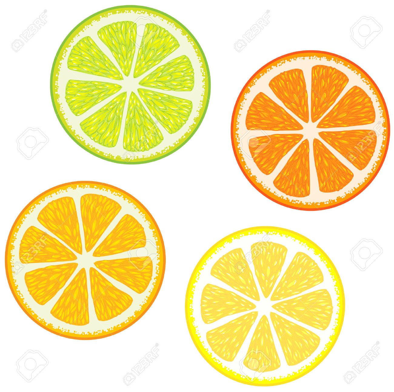 1300x1294 Orange (Fruit) Clipart Lime Slice