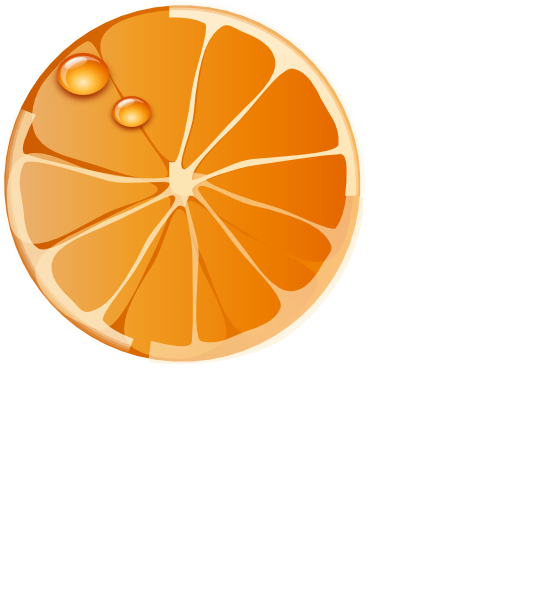 552x599 Orange Slice Clip Art