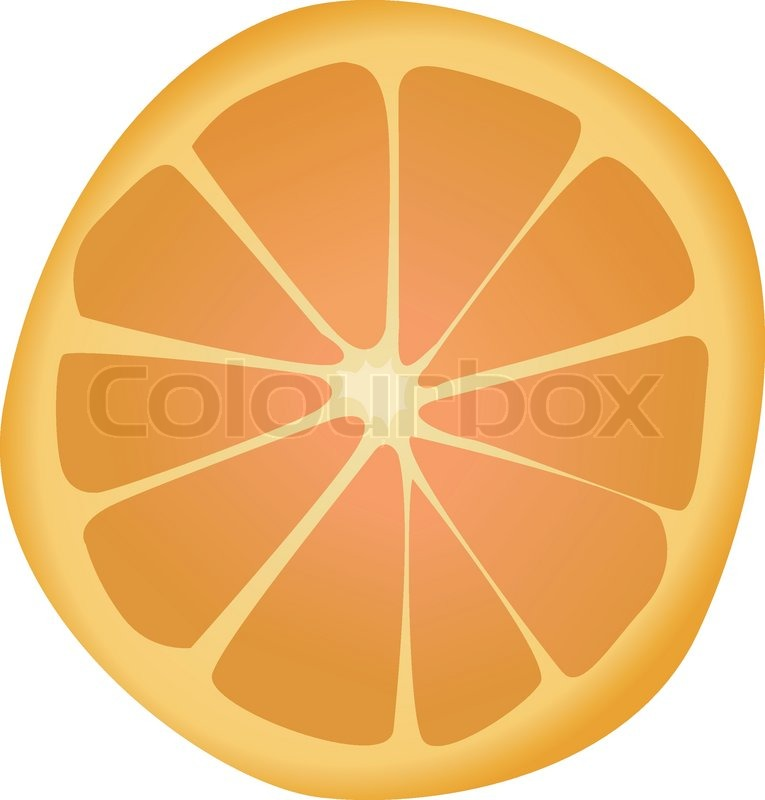 765x800 Illustration Of Orange Slice Stock Vector Colourbox