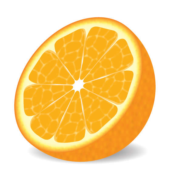 600x600 Oranges Free Orange Clipart Fruit Clip Art