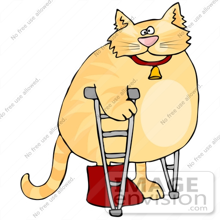 450x450 Orange Ginger Tabby Cat With Its Leg In A Cast, Using Crutches