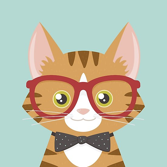 550x550 Orange Tabby Hipster Cat Photographic Prints By Lisa Marie