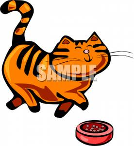 276x300 Tabby Cat Prancing In Front Of A Dish Of Food