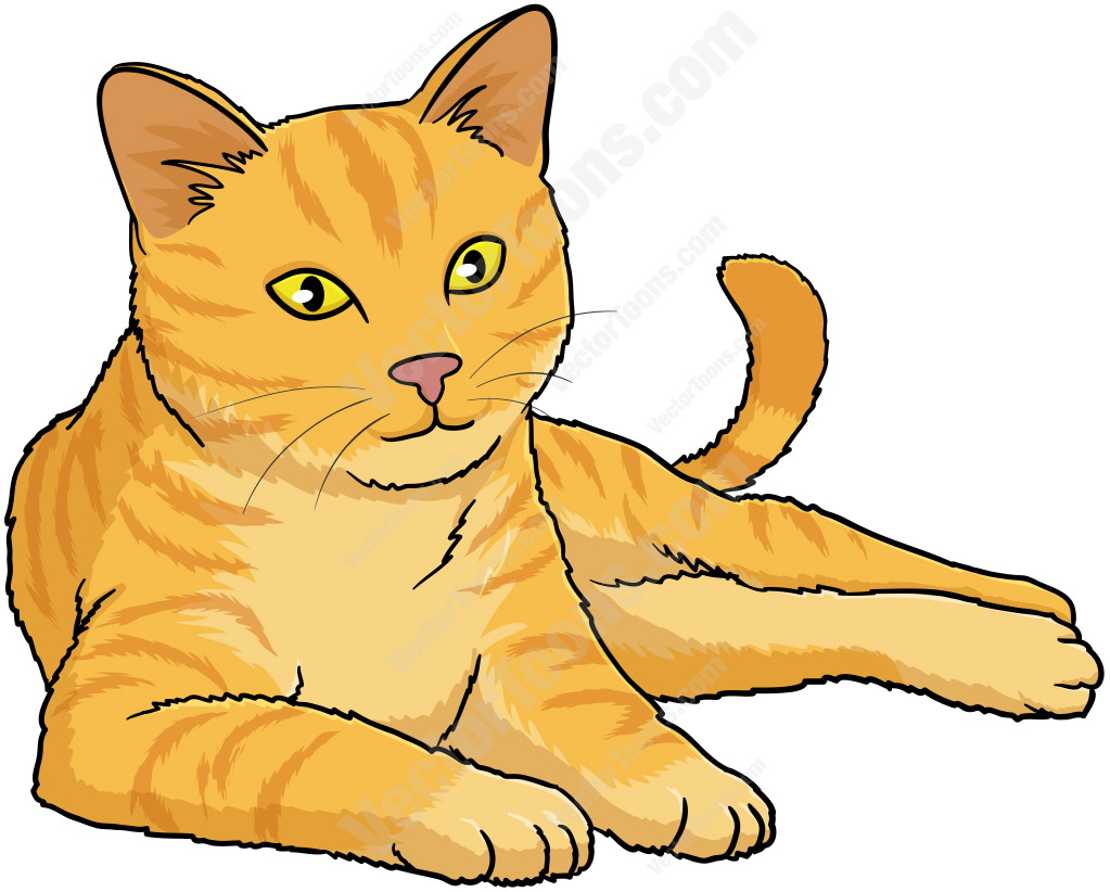 1023x822 Tabby Cat Clipart Simple Cat