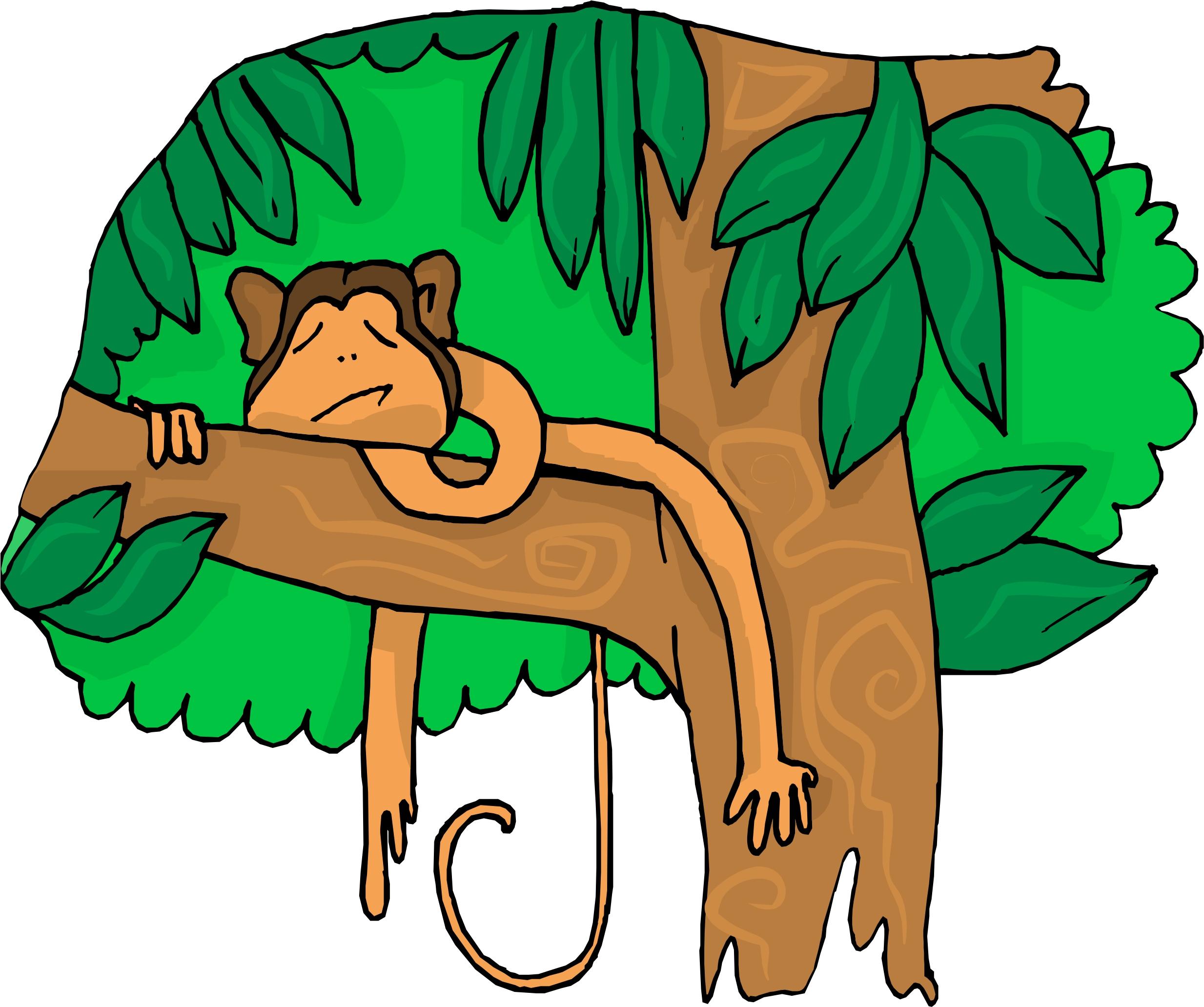 2467x2064 Cartoon Orange Tree Clipart