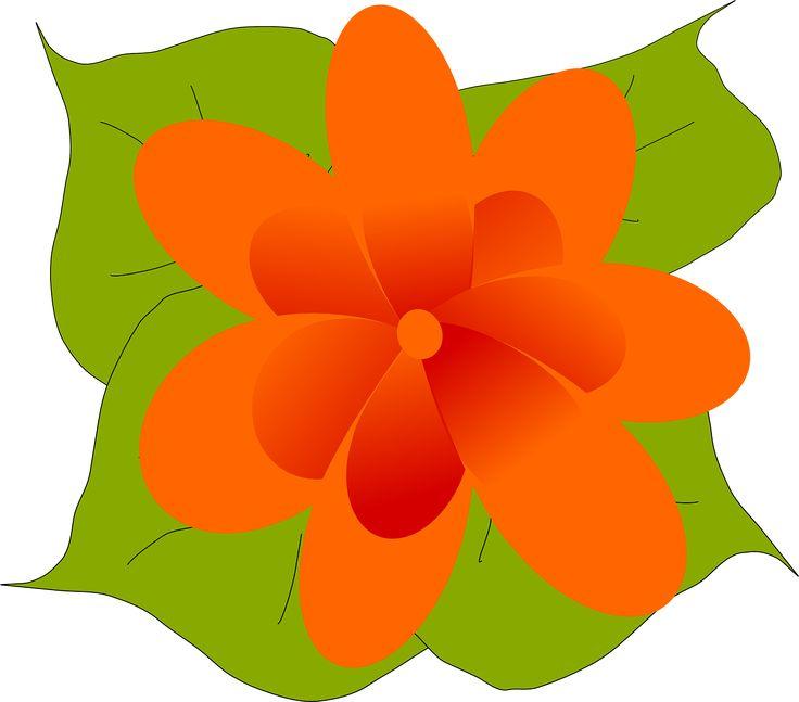 Oranges Clipart