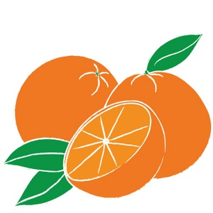 300x300 Free Oranges Clipart Image 0515 0910 2711 0036 Food Clipart