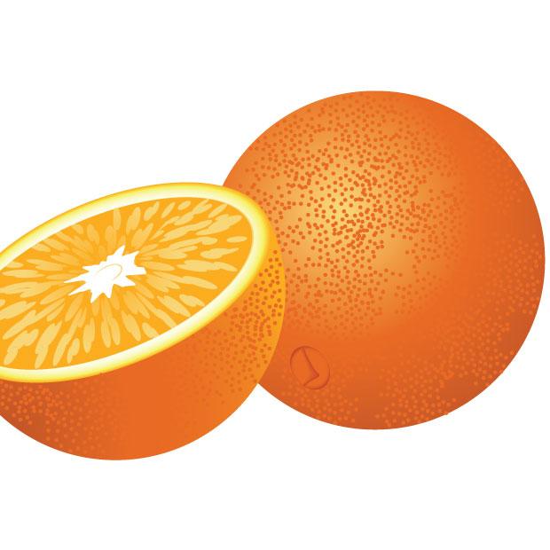 620x620 Fresh Clipart Orange