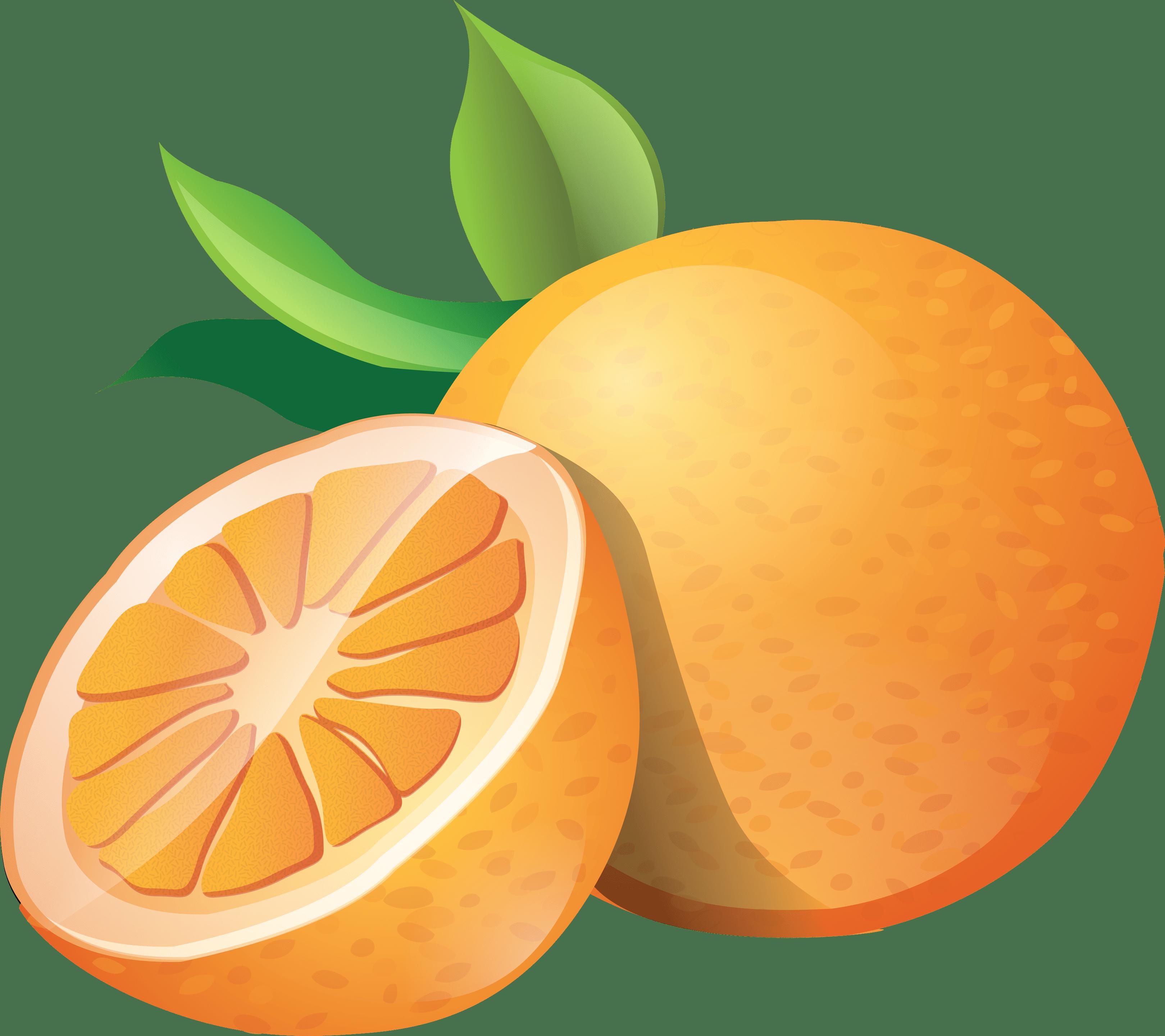 3239x2880 Orange Images Clip Art Allofpicts