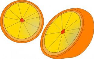 310x194 Orange Outline Clip Art Free Vectors Ui Download