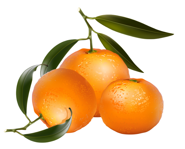 639x514 Pictures Of Oranges Free Download Clip Art
