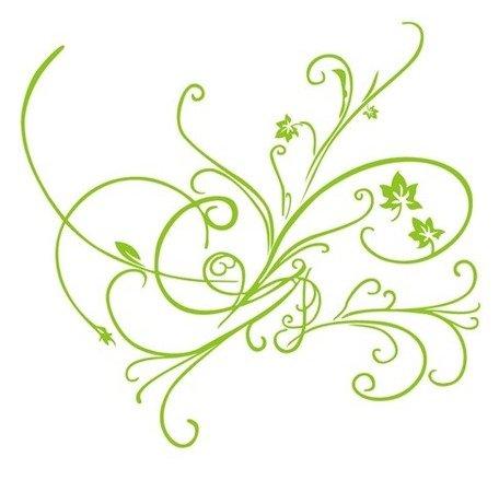 456x450 Green Vector Floral Ornament, Vector File