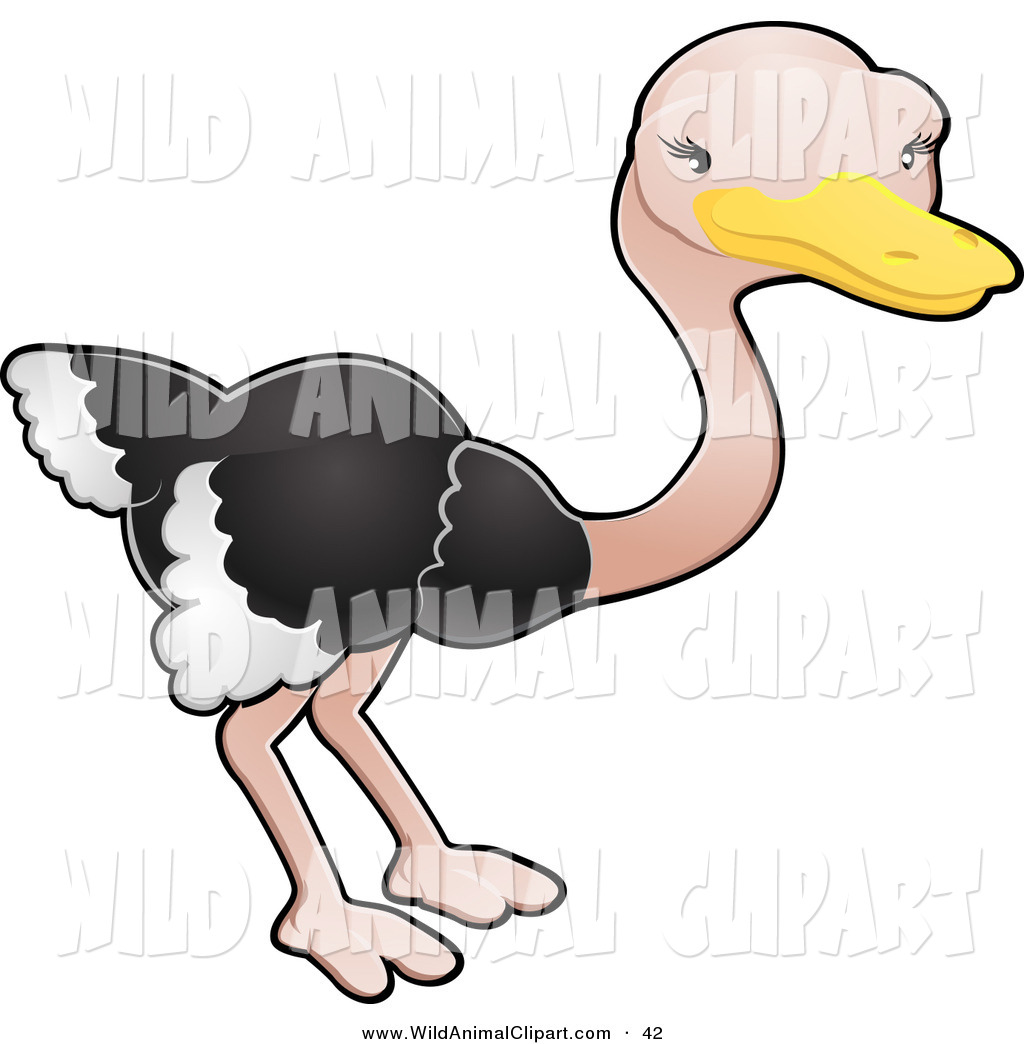 1024x1044 Royalty Free Zoo Stock Wildlife Designs