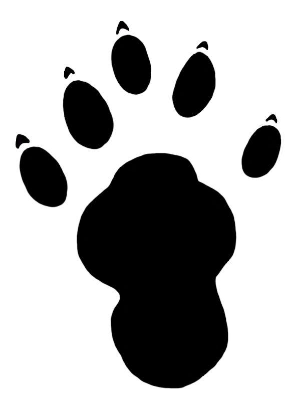 609x816 Die Besten Otter Clipart Ideen Auf Otter, Fish