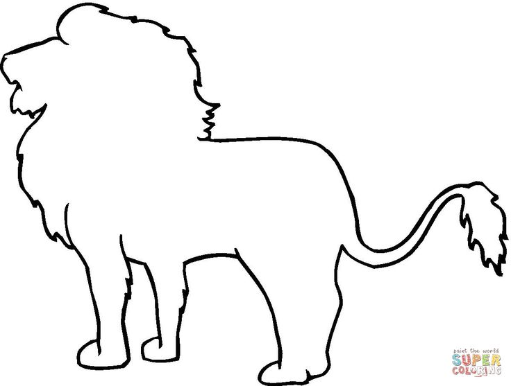 736x557 Drawn Lion Mammal