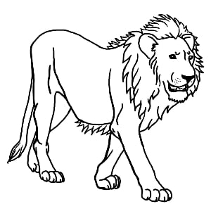 300x300 Outline And Coloring Pictures For Small Kids