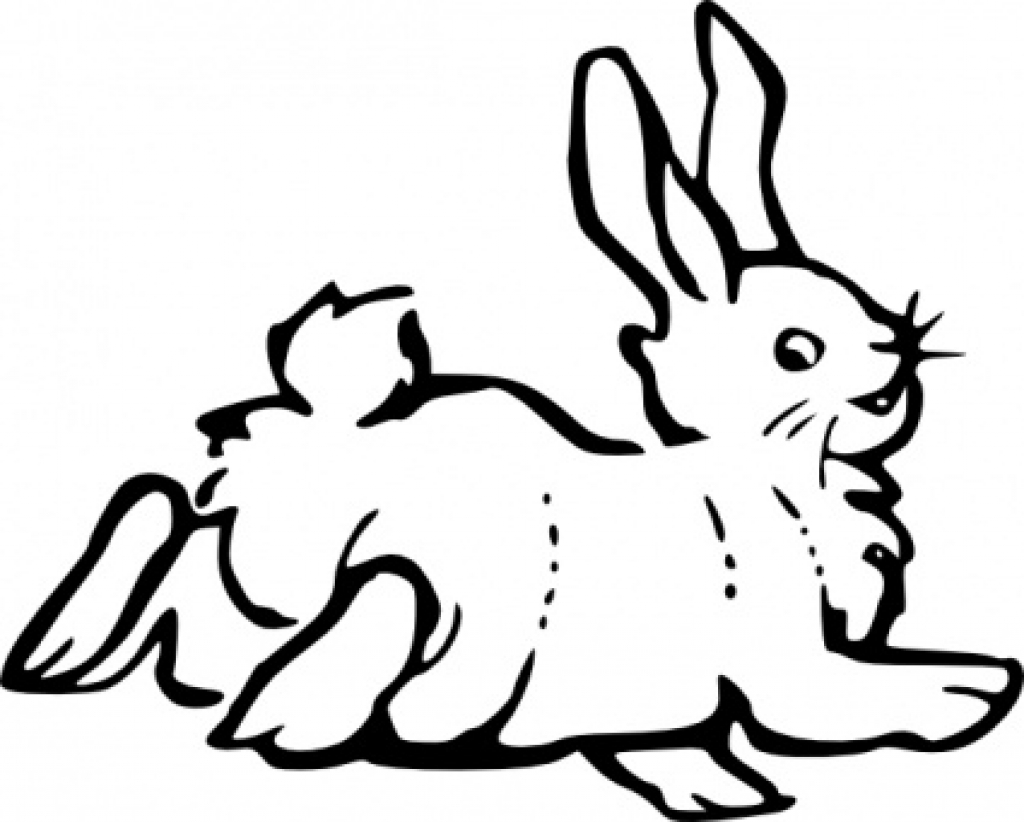 1024x822 Animal Outline Drawings Free Download Clip Art Free Clip Art