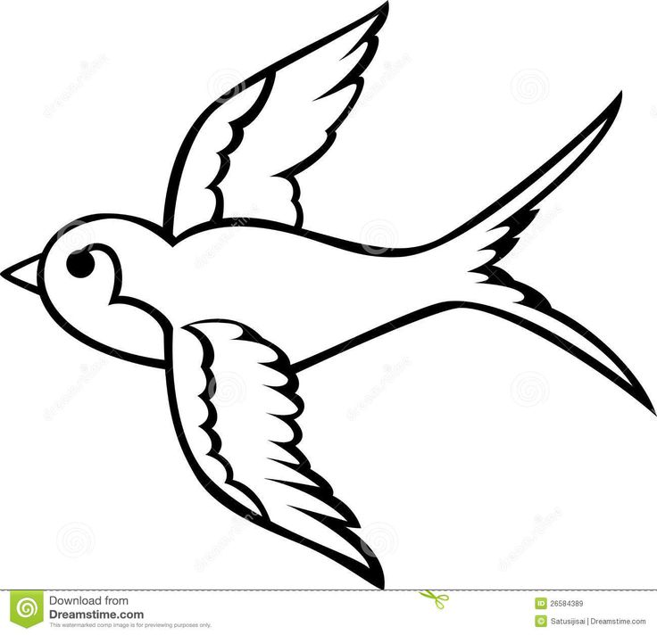 736x712 37 Best Swallow Tattoo Outline Images Swallow