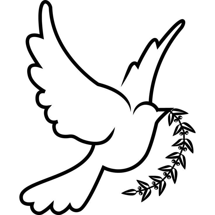 736x736 Funeral Clipart Dove Outline