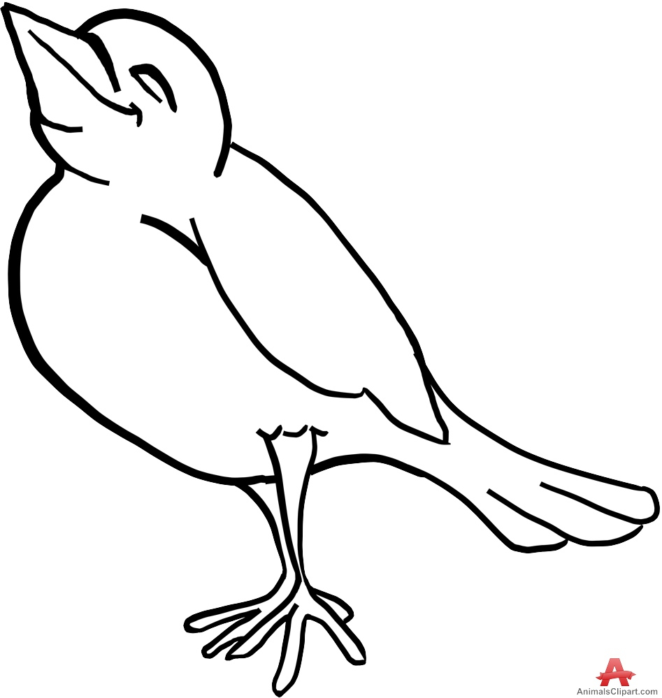 947x999 Outline Drawing Of A Bird