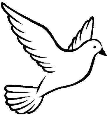 367x401 Best Dove Drawing Ideas White Dove Tattoos