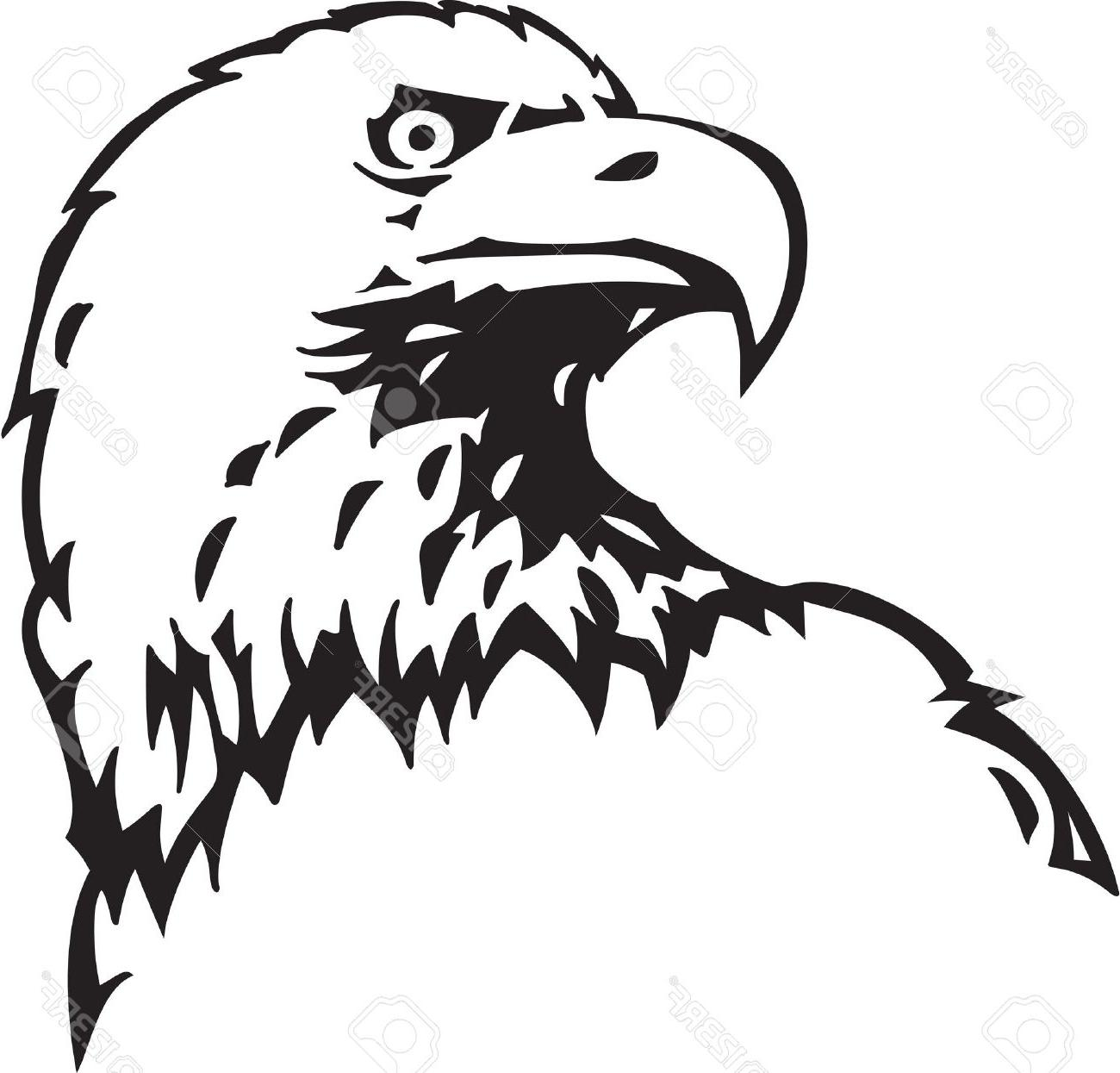 1300x1245 Best Bald Eagle Outline Drawing Vector Photos Free Vector Art