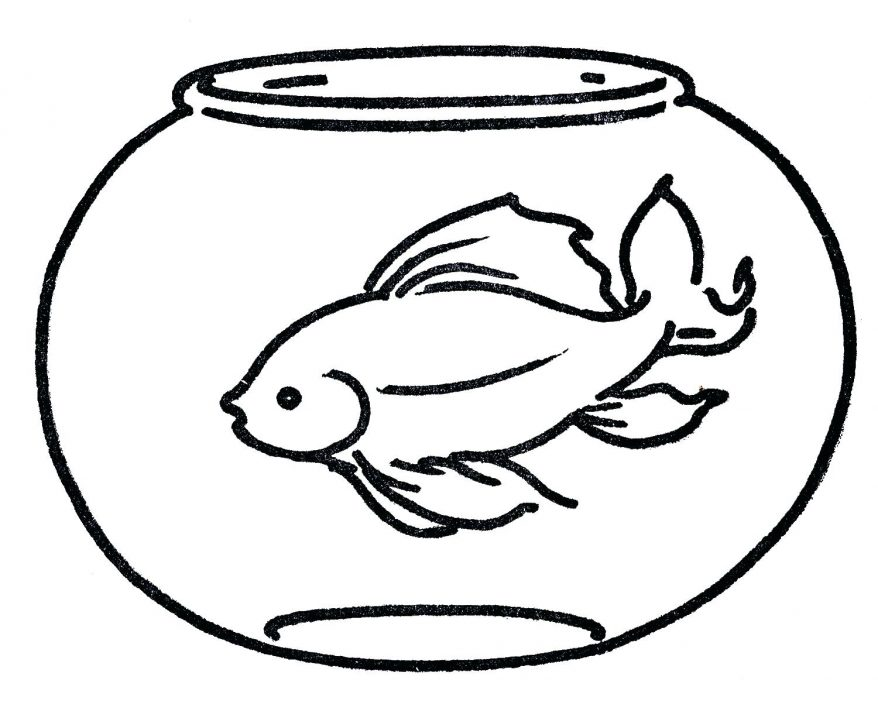 878x711 Cartoon Fish Drawings Free Printable Coloring Pages 16 Fascinating