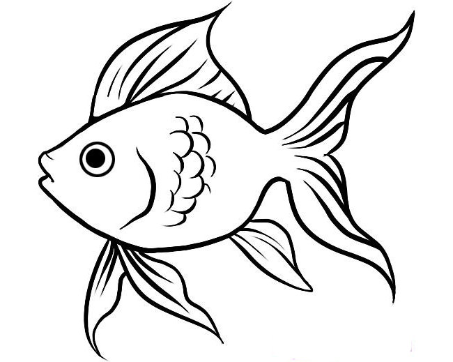 650x519 Fish Template Free Printable, Pdf Documents Download! Free