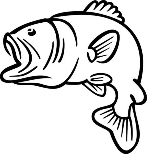 600x626 Bass Fish Outline Coloring Pages Best Place To Color Crafts