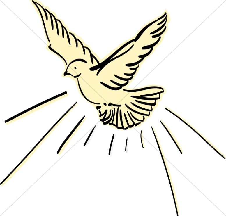 776x739 Yellow Dove Flying Dove Clipart