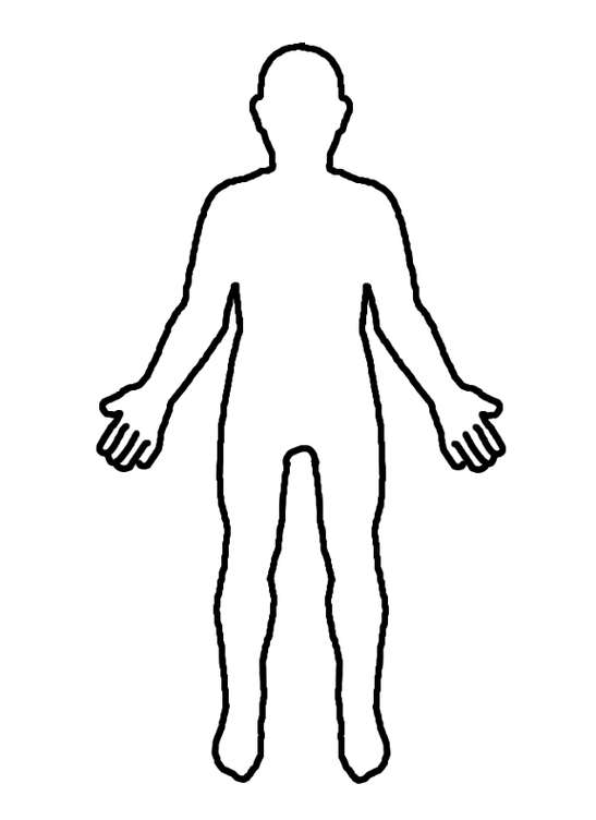 547x752 Clipart Human Body Outline