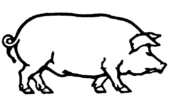 669x379 Outline Of Pig Clipart