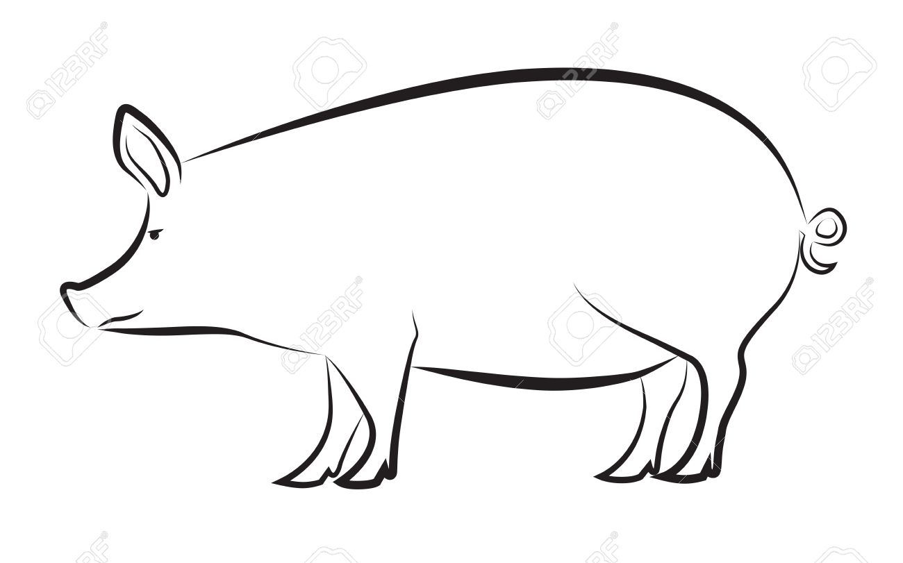 1300x811 Pig Isolated On White Royalty Free Cliparts, Vectors, And Stock