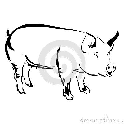 400x400 30 Best Pig Tattoo Outline Images Pigs, Tatting