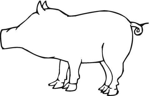 480x309 Pig Outline Coloring Page Free Printable Coloring Pages