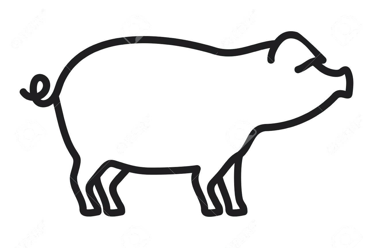 1300x866 Click The Baby Pigs And Mother Guinea Pig Outlines Outline