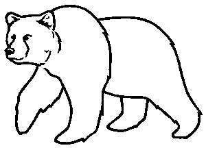 300x216 Grizzly Bear Clipart Outline