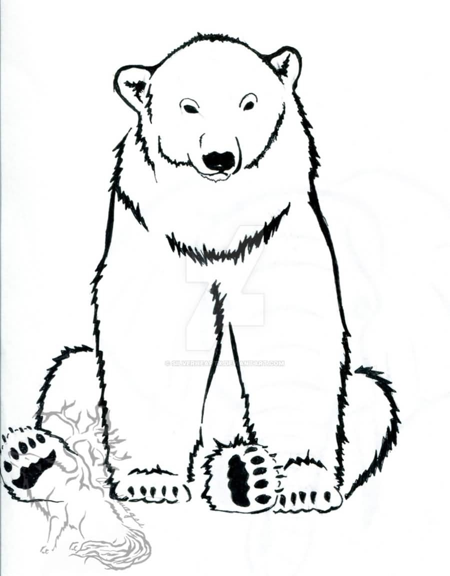 900x1150 Outline Drawing Of A Polar Bear Outline Polar Bear Tattoo Design