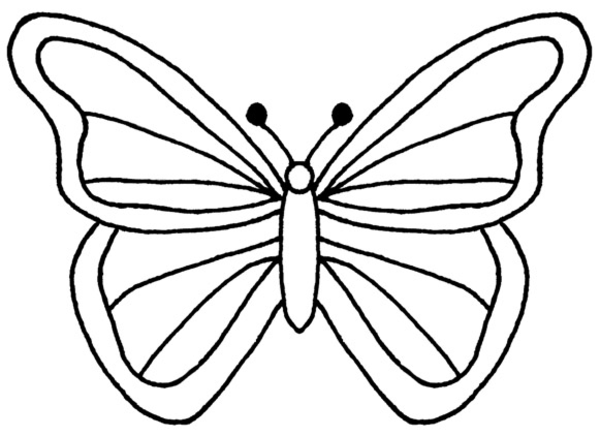 Butterfly outline cut out. Of free download best
