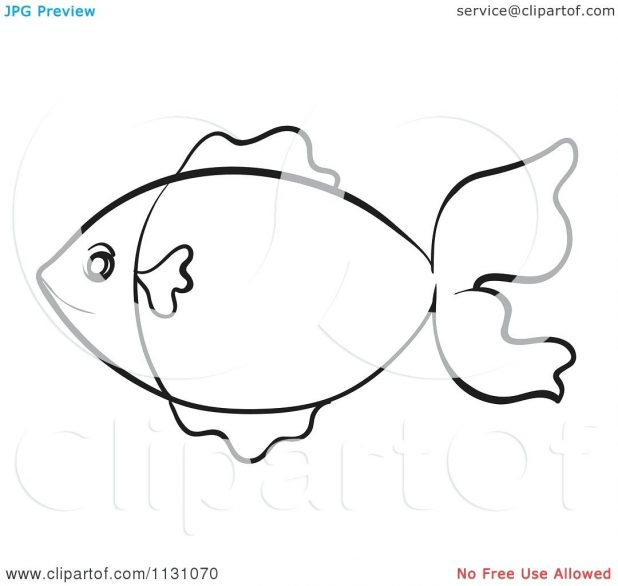 618x586 Coloring Pages Remarkable Fish Outline. Swordfish Outline Clipart