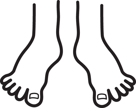 561x447 Of Foot Clipart