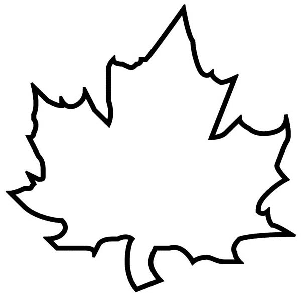 600x600 Maple Autumn Leaf Outline Coloring Page Kids Play Color Craft