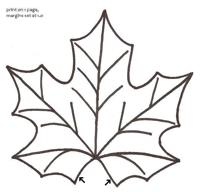 649x621 Best Leaf Outline Ideas Branch Drawing, Flower