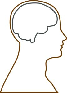 216x300 Human Head Pattern. Use The Printable Outline For Crafts, Creating