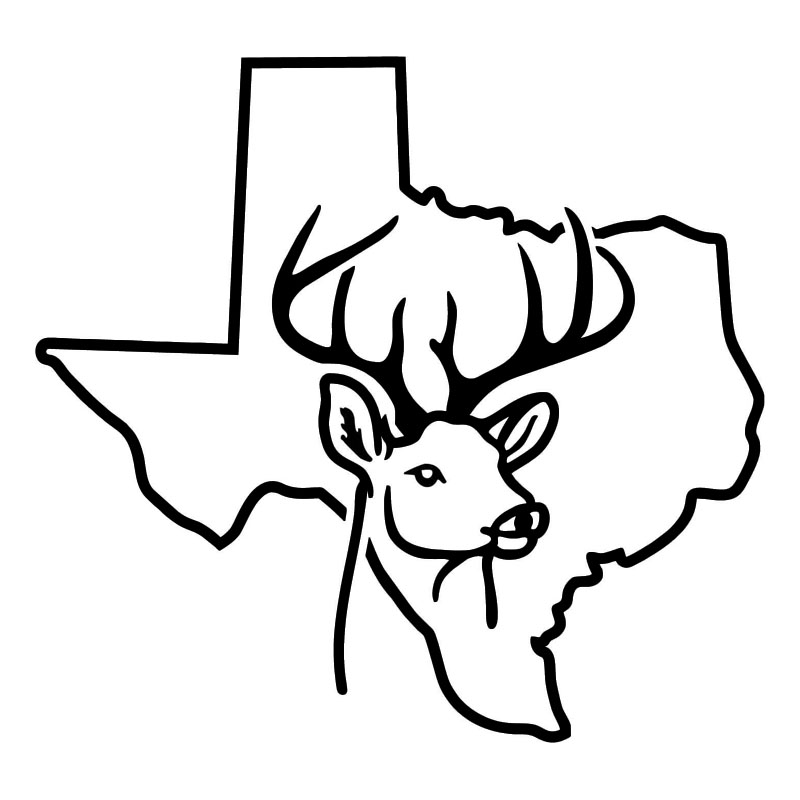 Outline Of Texas State