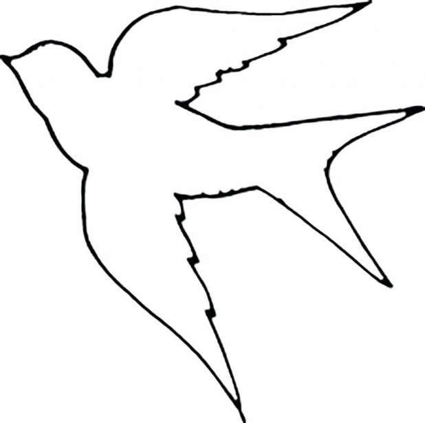 618x615 Outlines Of Birds To Colour In Flight Outlines Of Birds To Colour