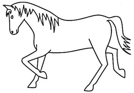 451x314 Animal Outline Drawings
