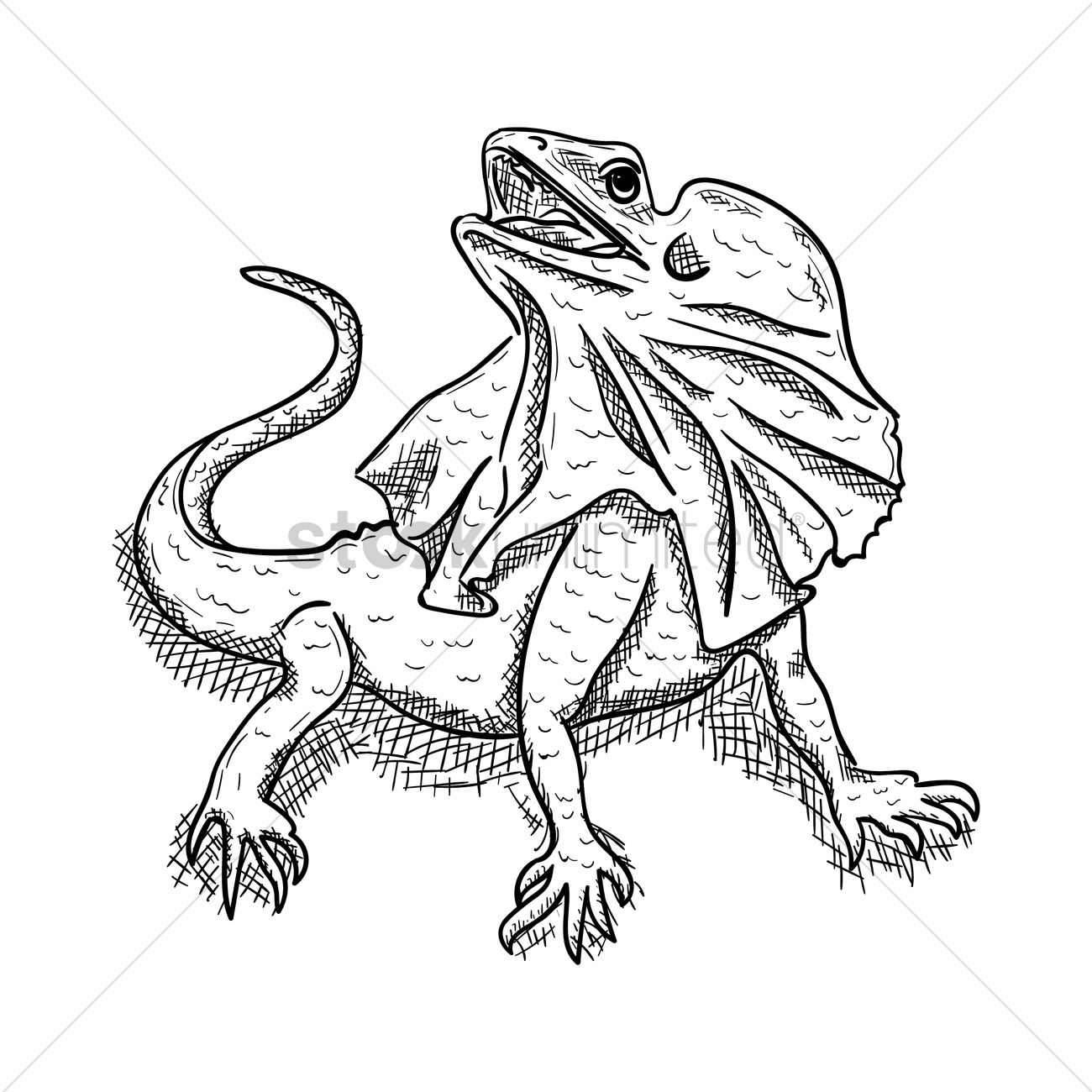 1300x1300 Art Drawing Drawings Sketching Outline Outlines Line Art Reptile
